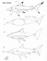 Draw a Basic Shark by Diana-Huang