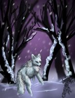 Ghosts of Winter by firedanceryote