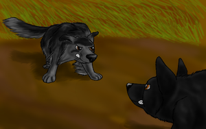 Which to Bury... by Colliequest
