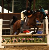 Fair Jumping 2 by Hey-There-Lefty