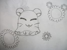 A Hamster from Hamtaro by XemeraLea