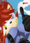 AT:The Sky Diving Hedgehog by RB9