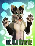 Paws up - Badge by DrizzleSnow