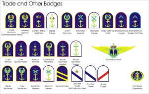 Aquilaan Navy Trade and Other Badges by Ienkoron