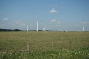 Cattle or Wind Farm by asaph70