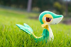 192.365 - A Wild Snivy Appeared by Mahou-Koneko