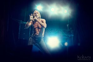 Iggy And The Stooges 09 by kobaru
