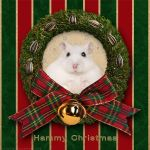 Hammy Christmas by hoschie