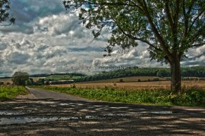 track across the fields by Saphira01