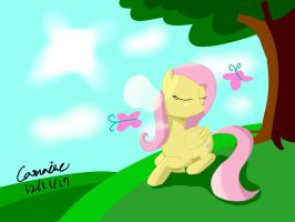 Fluttershy on hill by Camaine