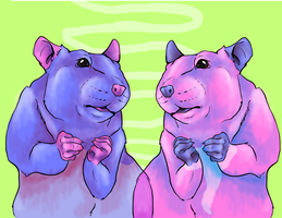 Candy Rats by sanr4