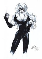 Black Cat by Mirian
