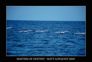 Masters of Destiny by Brindell