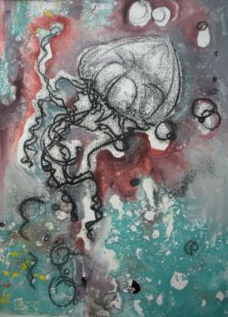 jellyfish trace monotype by nschach