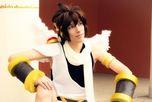 Pit (Kid Icarus) Cosplay #1 by Echolox