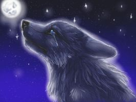Look to the Stars by firedanceryote