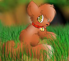 Yuki in the Grass (For Didi) by Bowtiefoxin