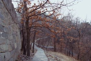 Next to the Greatwall of China by lilmoz