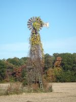 Windmill by Endeavor4ever