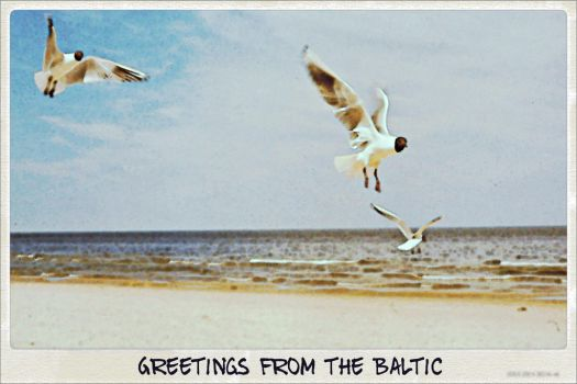 Greetings from the Baltic by Su58