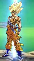Goku Trasformed by Matthew25892