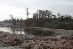 frosty lake 2010 by loobyloukitty