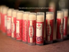 homemade lip balm by tuyetdinhsinhvat
