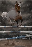 .:| Jump over the rain|:. by BRls-love-is-MY-Live