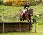 XC Stock 16 by Kennelwood-Stock