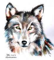 Wolf Portrait ~ by Gravom