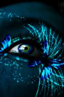 Blue Butterfly in the Web by ceciliay