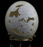 hand carved ostrich egg 2 by joechas