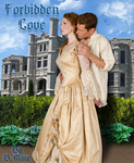 Book Cover Contest Entry 1 by WDWParksGal-Stock