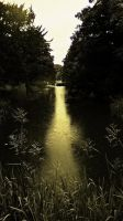 A Path Of Liquid Gold by graphic-rusty
