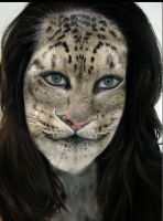Snow leopard by Mago 2007 by Mago2007