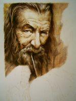 LO HOBBIT - WIP 1 - Gandalf by iViziDiManola