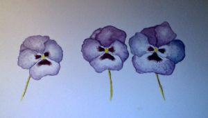Water Colour Pansies by SarahStar123