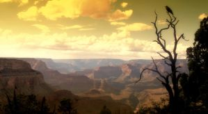 Eyes Over the Canyon by siposh