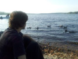 A Boy and His Ducks by SoulsLastSanctuary