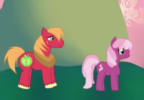 Big Mac and Cheerilee by ColorCakes