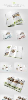 Multipurpose Tri-Fold Brochure Vol.1 by shapshapy