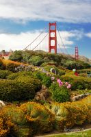 Golden Gate Flowers by SashaSvet
