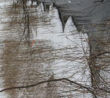 ICE STORM 01.12.11.3 by zraclooc
