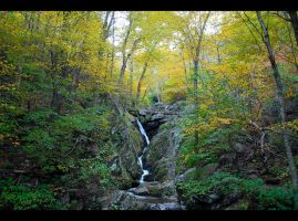 Lower Darkhollow Falls 2011 by FoxMcCarther