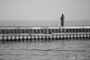 Lone Fisherman by robb-nelson