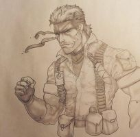Metal Gear Solid 3: Snake Eater by Rainbowboa