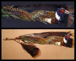 Pheasant Feather Painting by Novawuff
