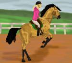We can't fly by Golden-Horse-Stables