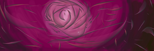 Purple Rose by Jessimie