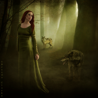 Walking with Wolves by Inadesign